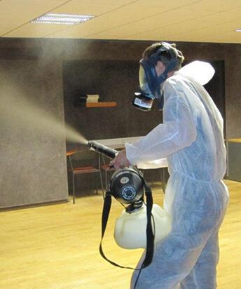 servicii profesionale de dezinfecție București